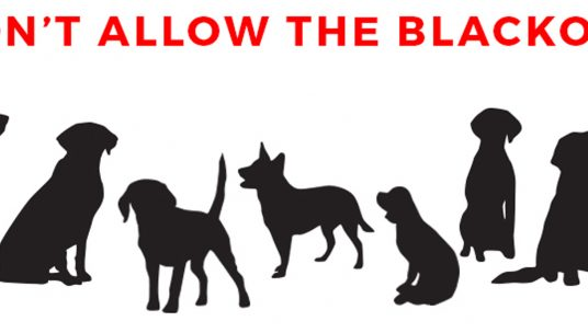 Reverse the USDA's Blackout of Information Related to Animals in Labs!