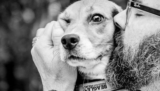 Share Your Pet's Story & Help Animals in Need
