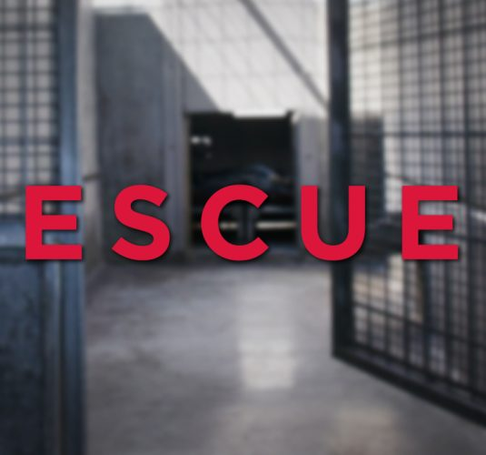 Pound Seizure Rescue