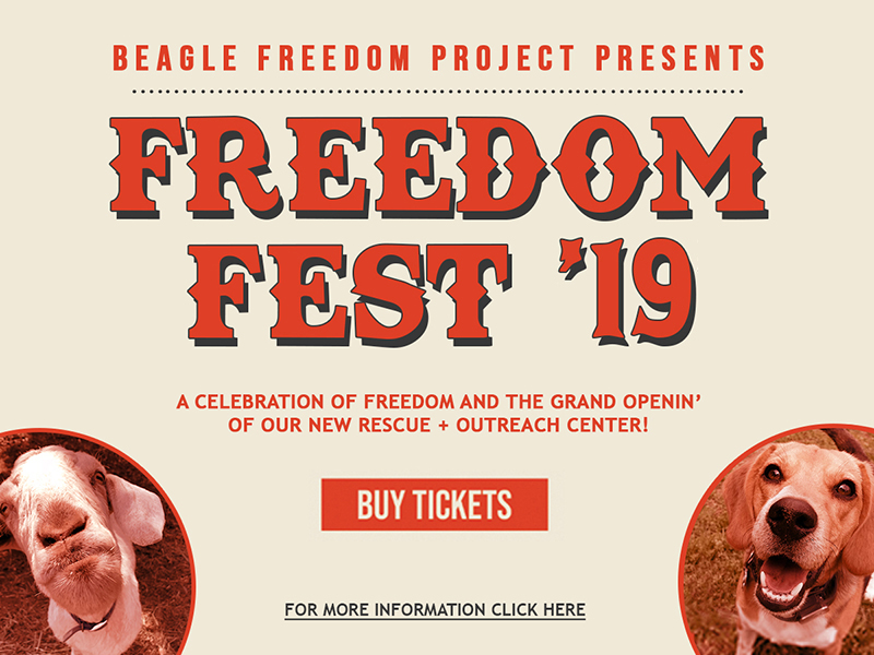 Buy Tickets to BFP Freedom Fest '19!