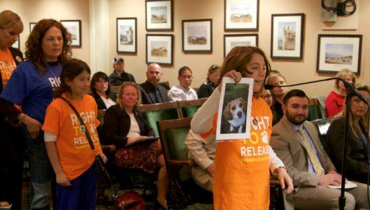 The Federal Beagle Freedom Bill