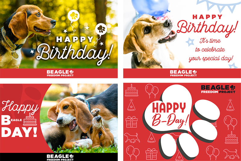 BFP Cards - Birthday
