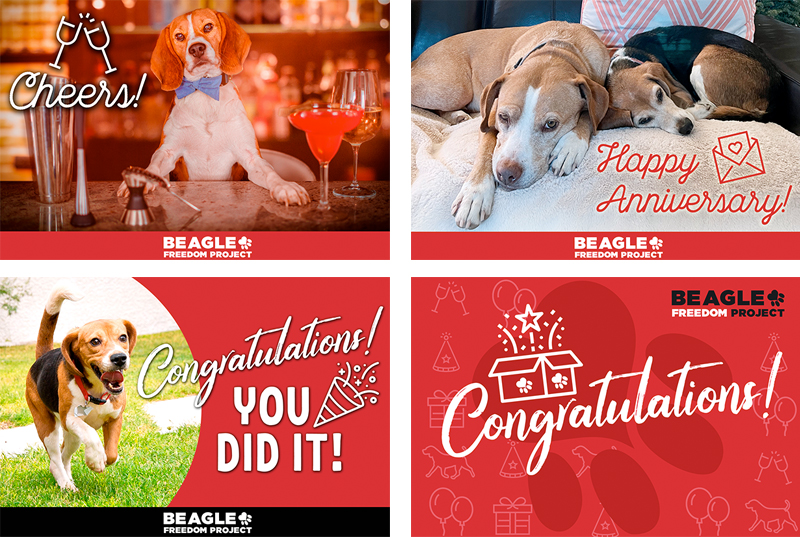 BFP Cards - Cheers