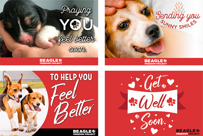 BFP Cards - Get Well