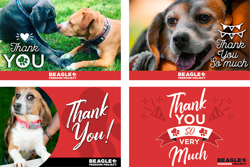 BFP Cards - Thank you
